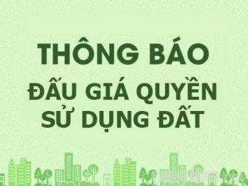 Thông tin đấu giá quyền sử dụng đất ở tại khu Gốc Quéo 1, thôn Ngọc Đình, xã Hồng Dương, huyện Thanh Oai, Hà Nội